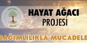 Hayat Ağacı Projesi Kadıköy'de