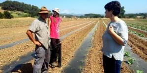 İsveç'ten Yerel Gıda ve Sağlıklı Beslenmeyi Teşvik Etmeyi Öğrenen İspanya Kenti: Mollet del Vallès