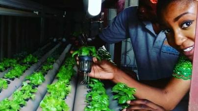 Kentsel Besin ve Su Sorununa Çözüm Önerileri