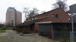 Düsseldorf Hayvan Barınağı Hakkında Gözlemler