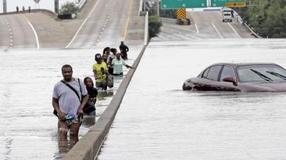 İklim Değişikliğinin Tetiklediği Büyük Göç