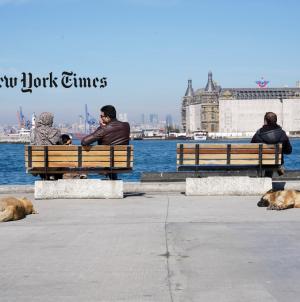 Kadıköy Belediyesi Hayvan Barınağı New York Times'a Haber Oldu