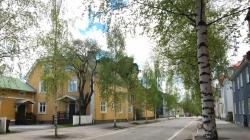 Sokak Ağaçları Hayat Kurtarıyor