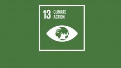 Covid Sonrası İyileşme, İklim Eylemi ile Başlamalı
