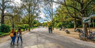 Amsterdam, parklardaki ziyaretçi akınıyla baş edebilmeye çalışıyor