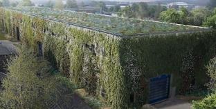 Hamburg daha yeşil binalar için bir proje başlattı