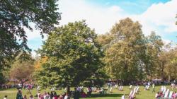 Londra iklim ve eşitlik için yeşil alana yatırım yapıyor