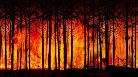 IPCC Yeni Raporu: Büyük İklim Değişiklikleri Kaçınılmaz ve Geri Döndürülemez